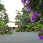 Malanda Lodge Motel Foto