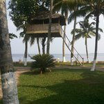 Machaan .... front view from the villa