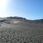 Black sand dunes in Waitakere