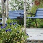 blå hage