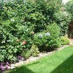 Photo de Bay View Guest House