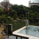 朝食時にも庭園の池を眺められます