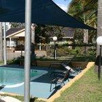 Shaded solar heated pool