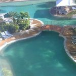 Coco Palm Pool