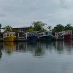 The many dive boats at CoCo View