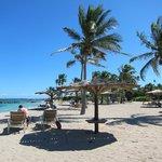 The beach at Nisbet Plantation and Beach Club