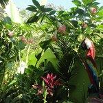 Garten/Aufenhaltsbereich