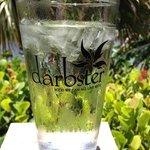 darbster agua