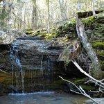 Indian Falls Trail