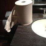 nasty sink...damp paper towels.