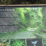 About 20-30 minutes away from lost whale, everyone MUST GO to Fern Canyon it was amazing!