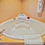 Sanijet Aquatherapy tub