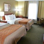 Comfort Inn Six Flags St. Louis Foto