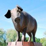 Sculpture Bronze Pig