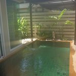 Private plunge pool for Spa Villa