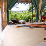 Lakira Camp Room
