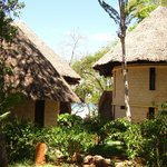 Our room in the Baobab wing