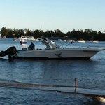 Dolswim boat