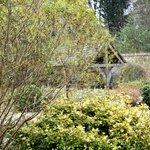 Wishing Well in Walled Garden
