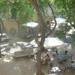 Palapa Restaurant and Bar