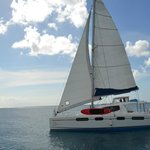 Seaduced Luxury Catamaran - Tours