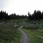 Trail ascending into Spray Park