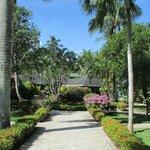 Photo de Las Palmas Residence