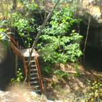 """The steps down to the Cenote """"Dreamsgate"""""""