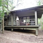 Phinda Forest Lodge cabin