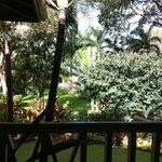 Looking off patio eating breakfast