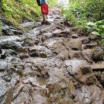 A bit of an uphill climb