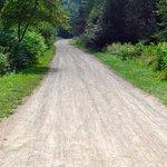 Foto de Le Petit Train du Nord Bike Path