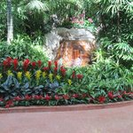 more gardens