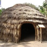Village Museum Foto
