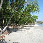beach area!