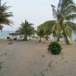 Coco Beach Cabana View