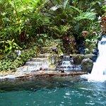 Photo of Cebu Botanical Garden