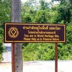 Dong Phayayen-Khao Yai Forest Complex Photo