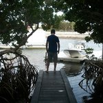 walk out dock