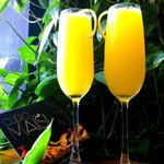 Mimosas for couples