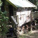 Crumpy's Camp