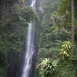 Putuk Truno Waterfall