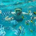 Snorkelling trip with Alex