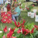 Fresh tropical flowers