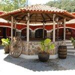 Hacienda Matel Day Tour
