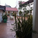 Palm Tree Second Floor