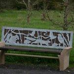 Beautiful bench on nature trail