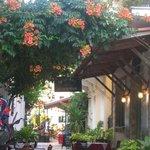 Stasinos Garden Restaurant