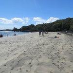 Mckenzie Bay, Rangitoto