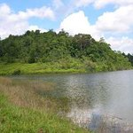 Hiyare Rainforest Reservoir-bild
